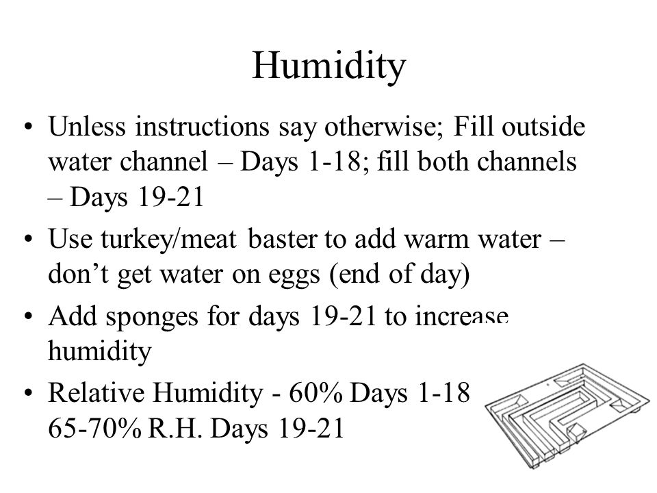 Humidity Unless instructions say otherwise; Fill outside water channel – Days 1-18; fill both channels – Days 19-21 Use turkey/meat baster to add warm