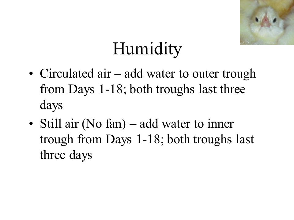 Humidity Circulated air – add water to outer trough from Days 1-18; both troughs last three days Still air (No fan) – add water to inner trough from D