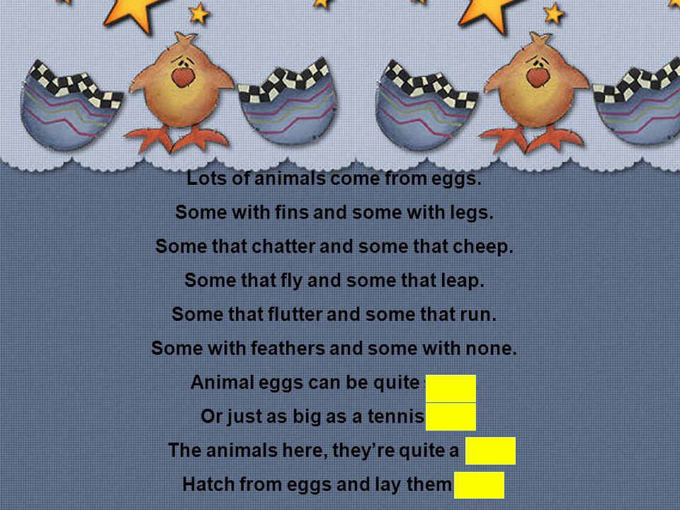 Lots of animals come from eggs. Some with fins and some with legs. Some that chatter and some that cheep. Some that fly and some that leap. Some that