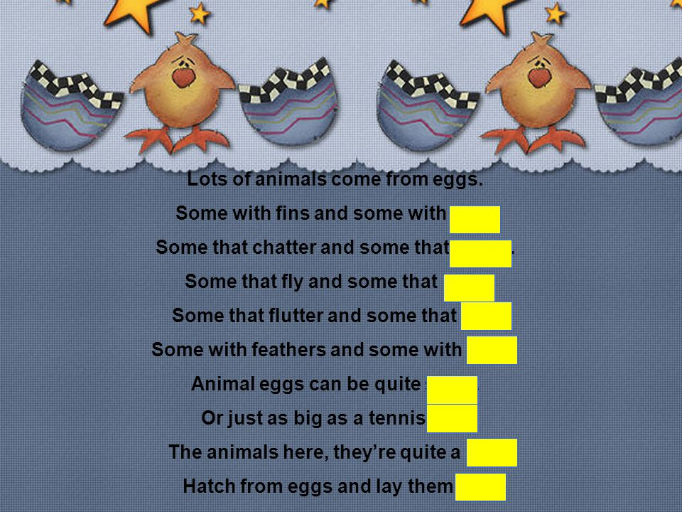 Lots of animals come from eggs.Some with fins and some with legs.