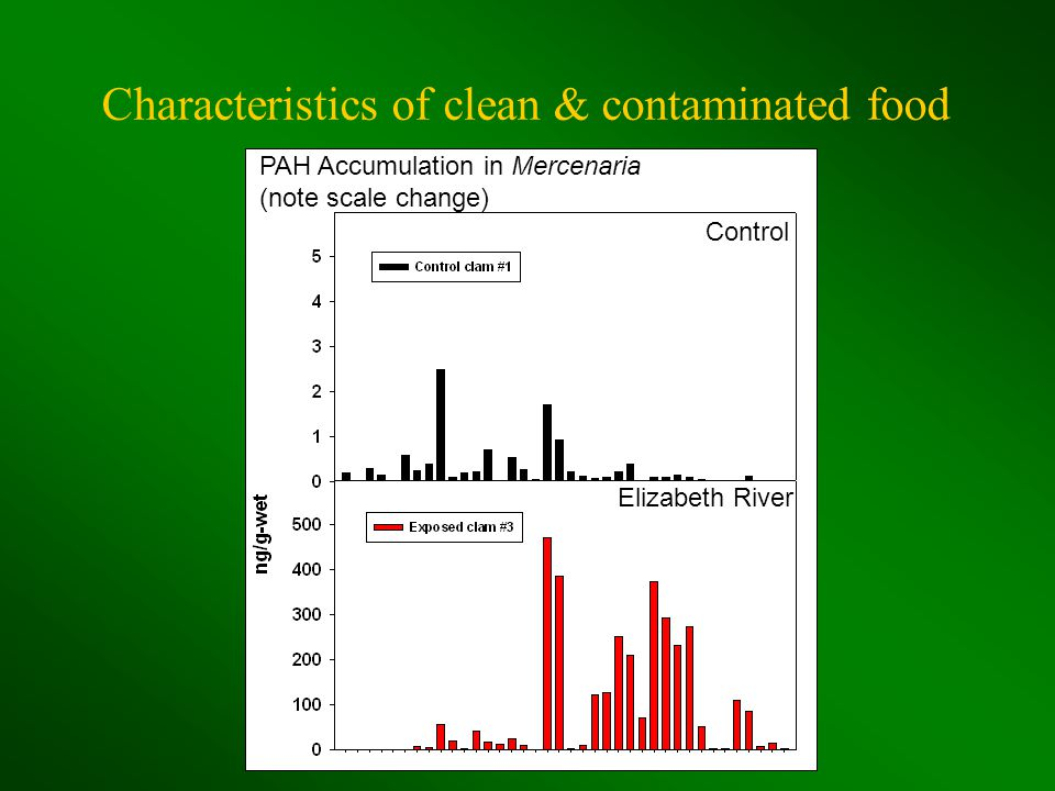 Characteristics of clean & contaminated food PAH Accumulation in Mercenaria (note scale change) Control Elizabeth River