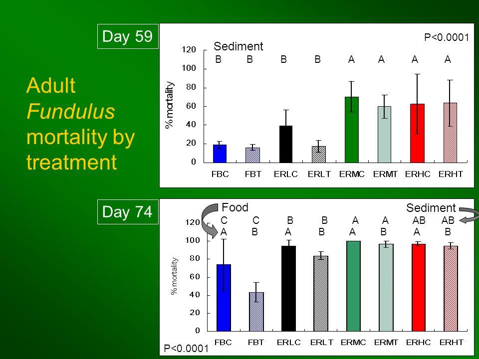 B B B B A A A A P<0.0001 A B A B C C B B A A AB AB P<0.0001 Day 74 Day 59 Adult Fundulus mortality by treatment Sediment Food Sediment