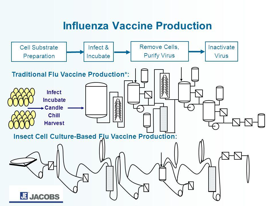 12 Influenza Vaccine Production Traditional Flu Vaccine Production*: Insect Cell Culture-Based Flu Vaccine Production: Cell Substrate Preparation Remo