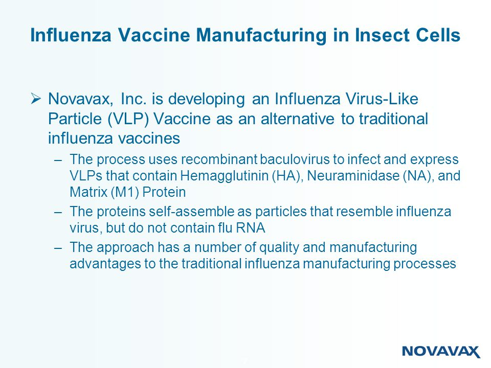 18 Influenza Vaccine Production Comparison of Project Duration Time, yrs 01234 Design Construction Commissioning Qualification Validation Egg Based Process Insect Cell Culture Design Construction Commissioning Qualification Validation Time Saved