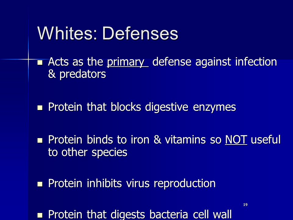 19 Whites: Defenses Acts as the primary defense against infection & predators Acts as the primary defense against infection & predators Protein that blocks digestive enzymes Protein that blocks digestive enzymes Protein binds to iron & vitamins so NOT useful to other species Protein binds to iron & vitamins so NOT useful to other species Protein inhibits virus reproduction Protein inhibits virus reproduction Protein that digests bacteria cell wall Protein that digests bacteria cell wall