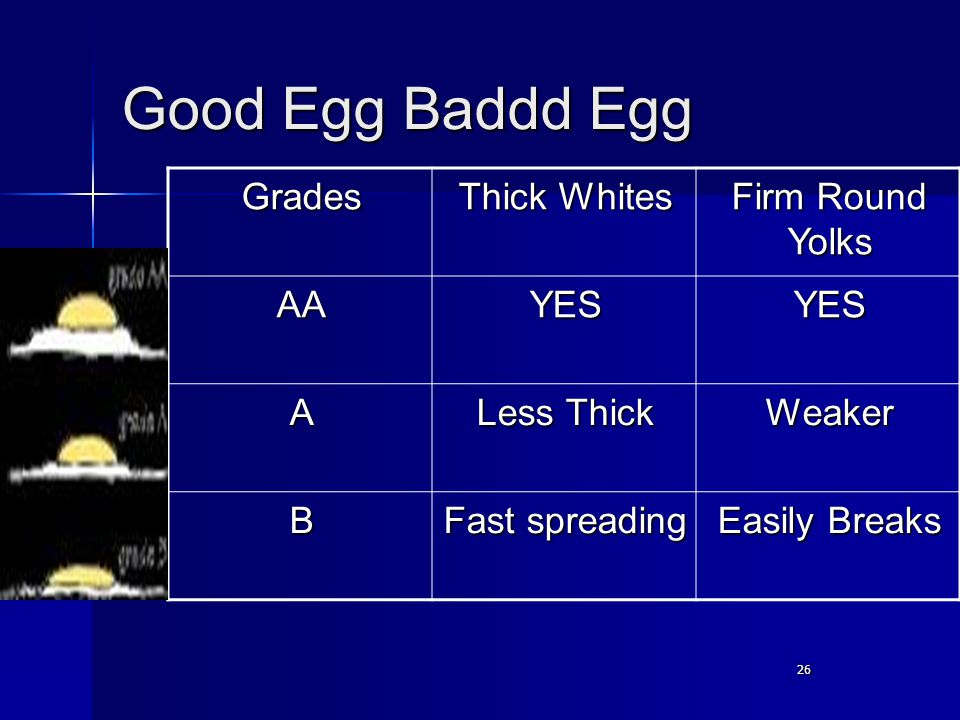 26 Good Egg Baddd Egg Grades Thick Whites Firm Round Yolks AAYESYES A Less Thick Weaker B Fast spreading Easily Breaks