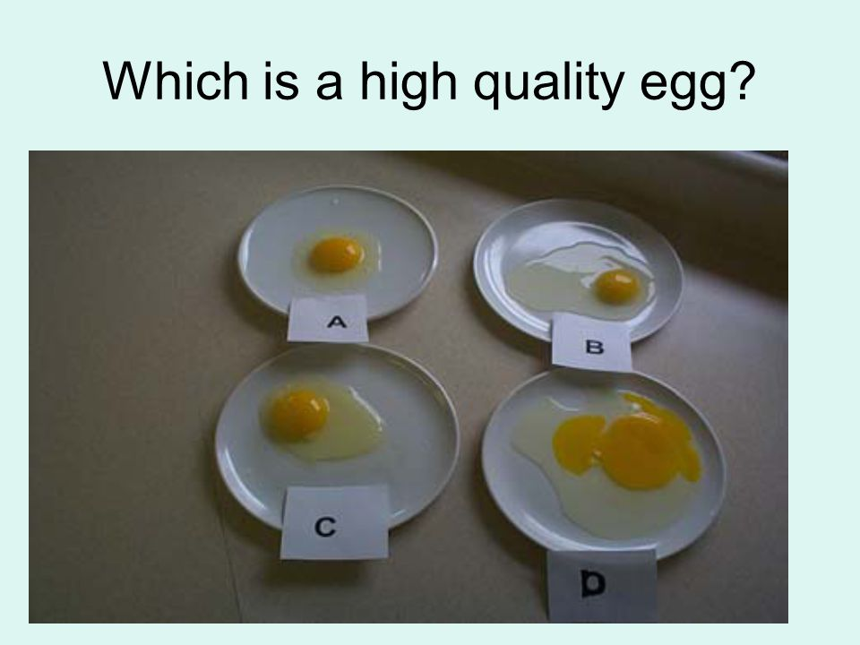 Cooking Eggs, cont… Poaching: healthy way to cook an egg.