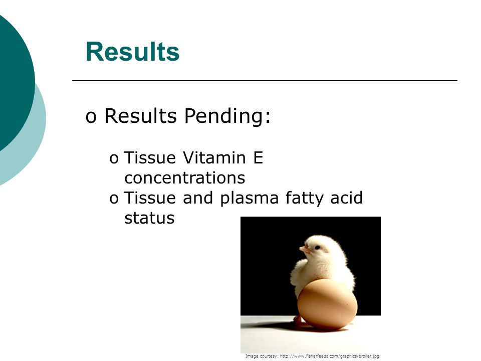 Results o Results Pending: oTissue Vitamin E concentrations oTissue and plasma fatty acid status Image courtesy:
