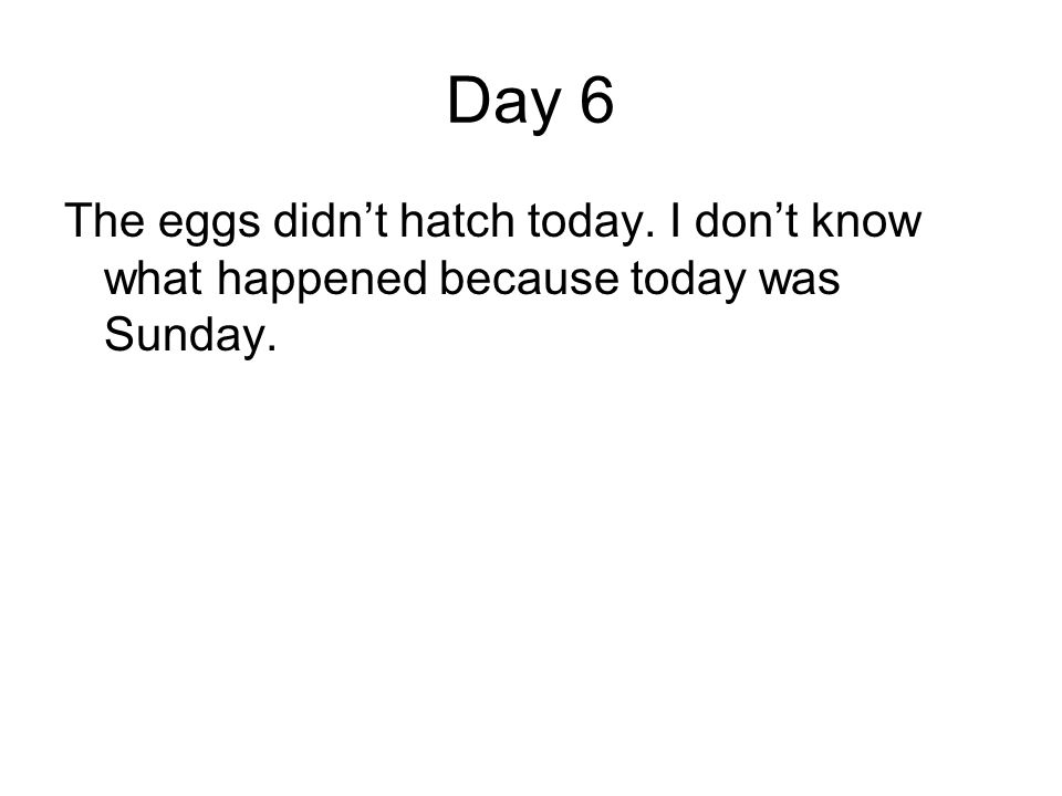Day 6 The eggs didnt hatch today. I dont know what happened because today was Sunday.