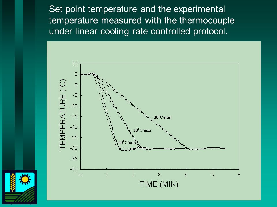 Set point temperature and the experimental temperature measured with the thermocouple under linear cooling rate controlled protocol.
