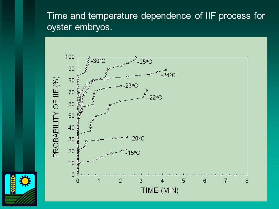 Time and temperature dependence of IIF process for oyster embryos.