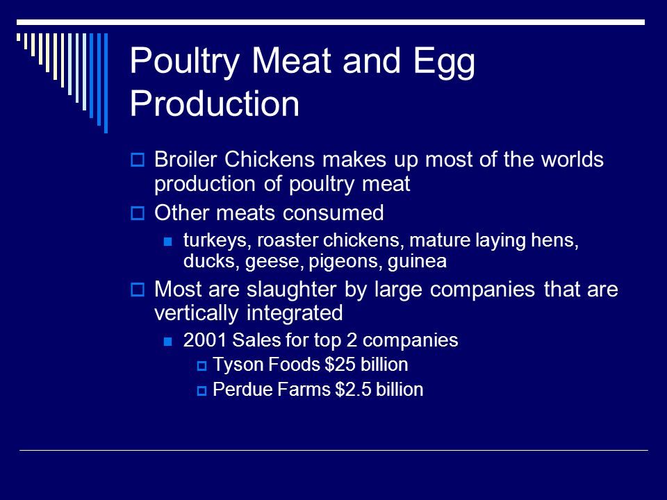 Poultry Meat and Egg Production Broiler Chickens makes up most of the worlds production of poultry meat Other meats consumed turkeys, roaster chickens, mature laying hens, ducks, geese, pigeons, guinea Most are slaughter by large companies that are vertically integrated 2001 Sales for top 2 companies Tyson Foods $25 billion Perdue Farms $2.5 billion