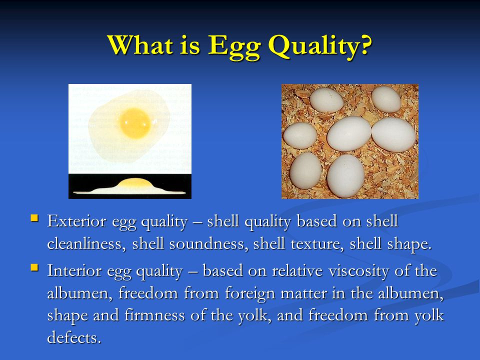 What is Egg Quality? Exterior egg quality – shell quality based on shell cleanliness, shell soundness, shell texture, shell shape. Interior egg qualit