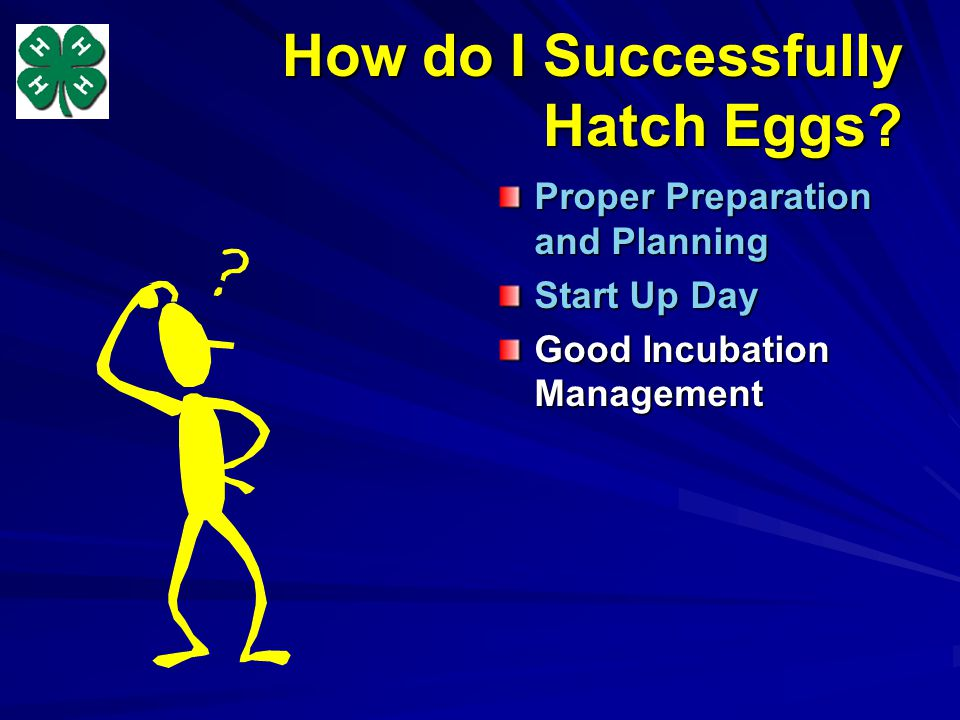 How do I Successfully Hatch Eggs? Proper Preparation and Planning Start Up Day Good Incubation Management