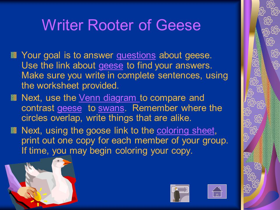 Writer Rooter of Geese Your goal is to answer questions about geese.