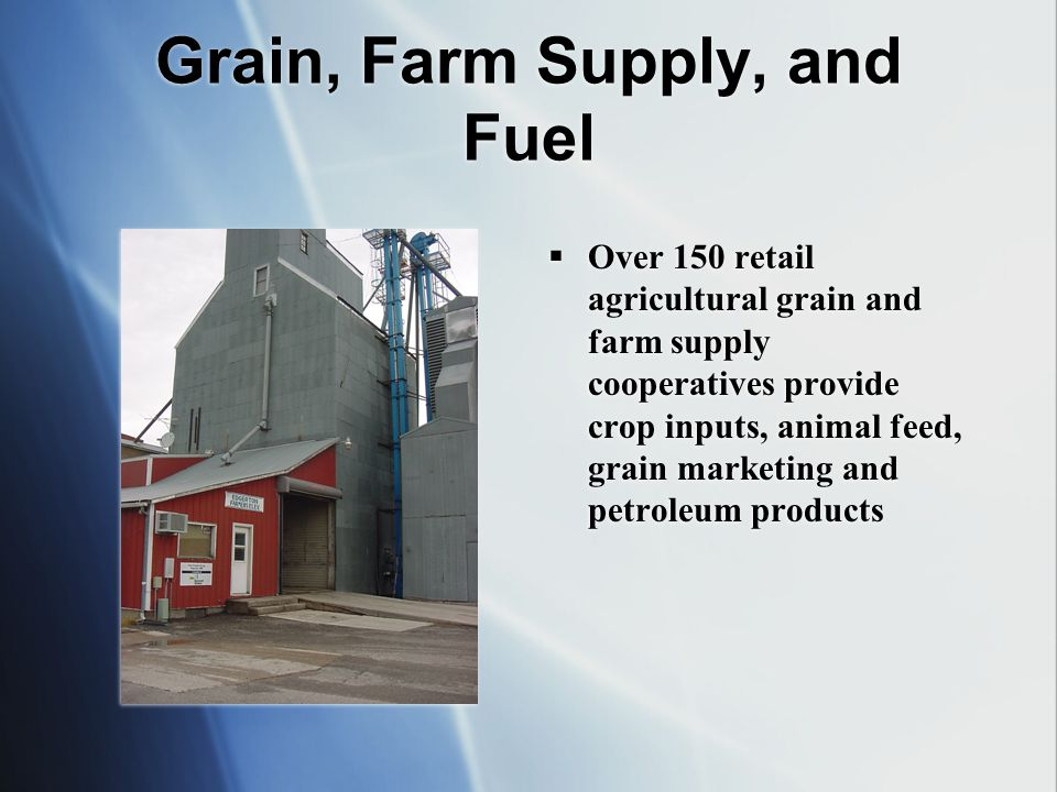 Grain, Farm Supply, and Fuel Over 150 retail agricultural grain and farm supply cooperatives provide crop inputs, animal feed, grain marketing and petroleum products