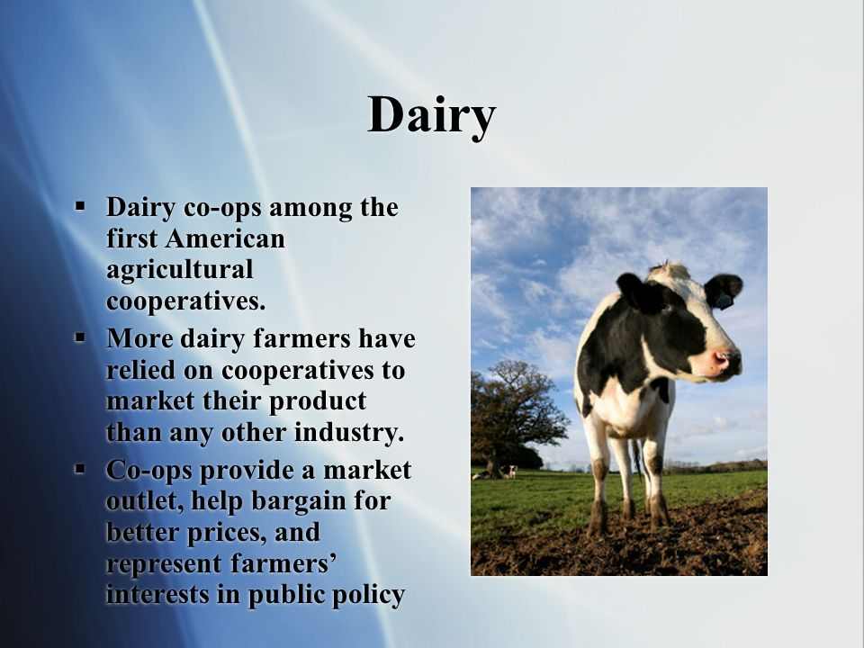 Dairy Dairy co-ops among the first American agricultural cooperatives.
