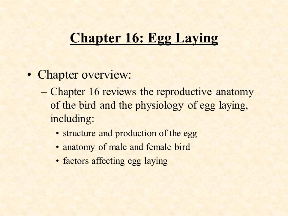 Chapter 16: Egg Laying Chapter overview: –Chapter 16 reviews the reproductive anatomy of the bird and the physiology of egg laying, including: structu