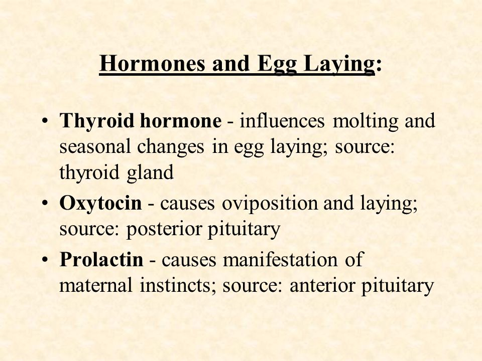 Hormones and Egg Laying: Thyroid hormone - influences molting and seasonal changes in egg laying; source: thyroid gland Oxytocin - causes oviposition