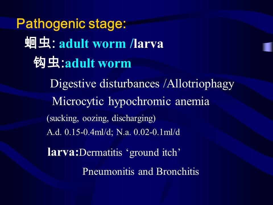Pathogenic stage: : adult worm /larva : adult worm Digestive disturbances /Allotriophagy Microcytic hypochromic anemia (sucking, oozing, discharging)