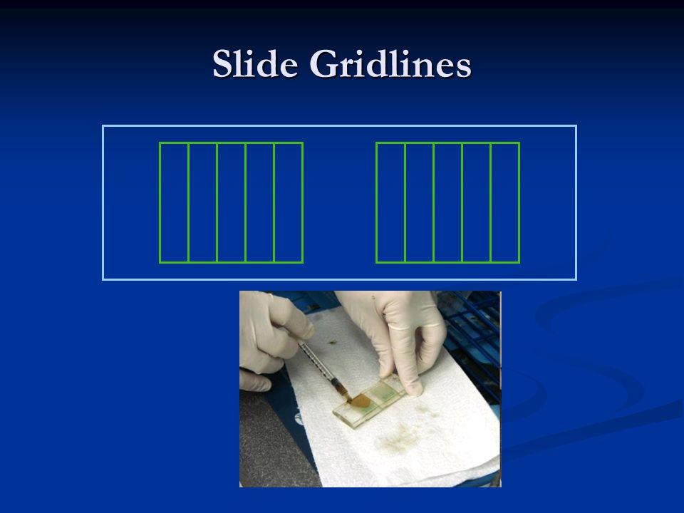 Slide Gridlines