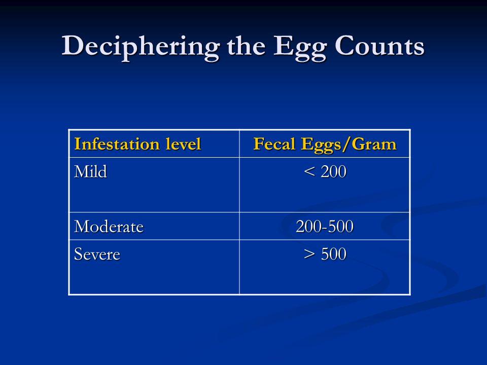 Deciphering the Egg Counts Infestation level Fecal Eggs/Gram Mild < 200 Moderate200-500 Severe > 500