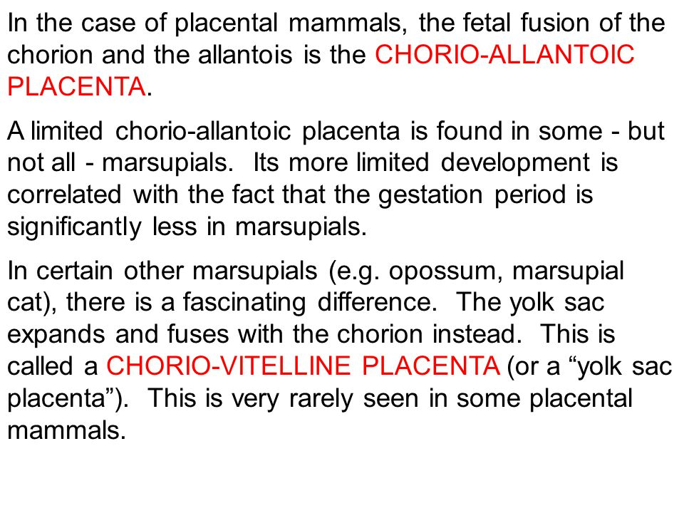 In the case of placental mammals, the fetal fusion of the chorion and the allantois is the CHORIO-ALLANTOIC PLACENTA. A limited chorio-allantoic place