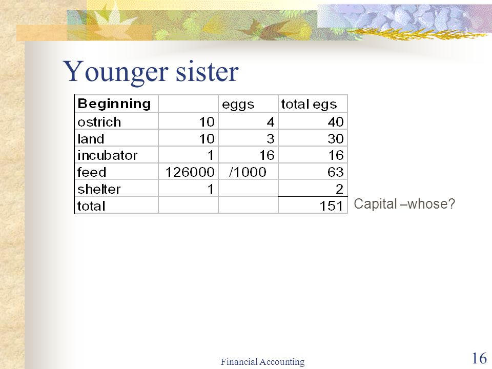Financial Accounting 16 Younger sister Capital –whose?
