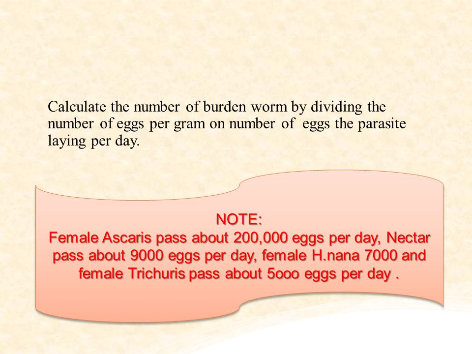 Calculate the number of burden worm by dividing the number of eggs per gram on number of eggs the parasite laying per day. NOTE: Female Ascaris pass a