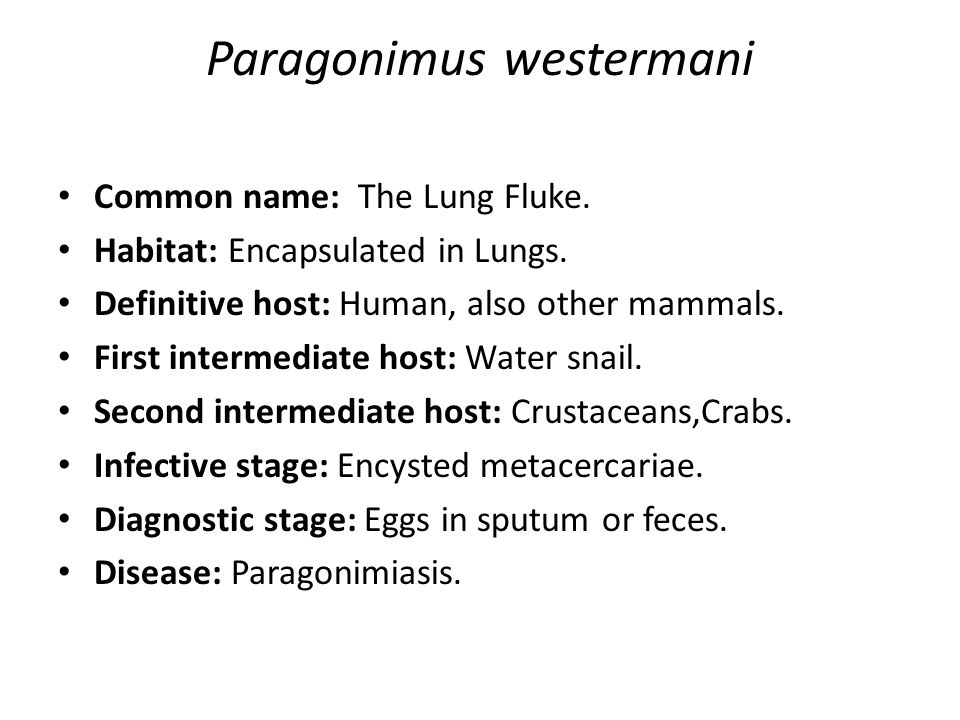 Common name: The Lung Fluke. Habitat: Encapsulated in Lungs. Definitive host: Human, also other mammals. First intermediate host: Water snail. Second