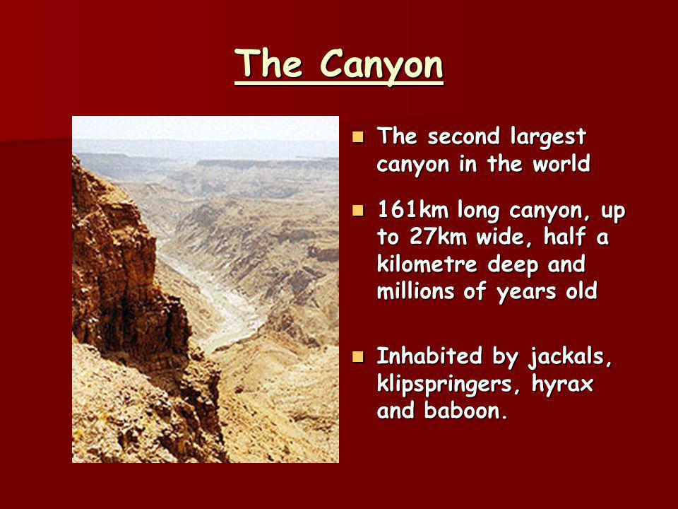 The Canyon The second largest canyon in the world The second largest canyon in the world 161km long canyon, up to 27km wide, half a kilometre deep and millions of years old 161km long canyon, up to 27km wide, half a kilometre deep and millions of years old Inhabited by jackals, klipspringers, hyrax and baboon.