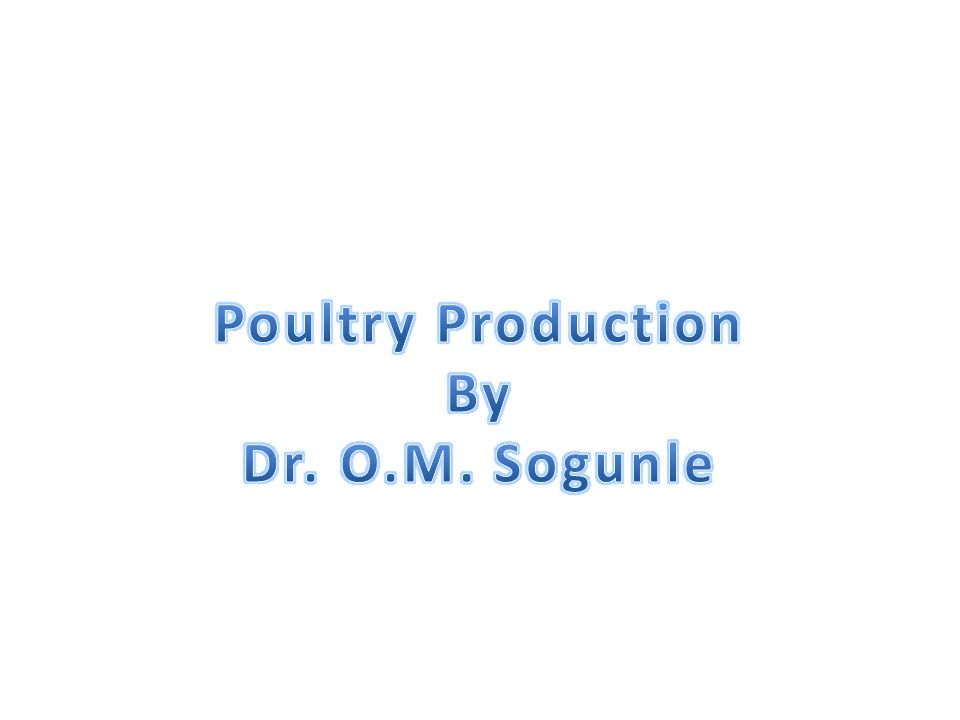 Management of Broiler Chicken Management similar to that of pullet chicks during brooding but it requires a higher ventilation because they are stocked at a higher density (0.06sq m) from day-old to market weight.