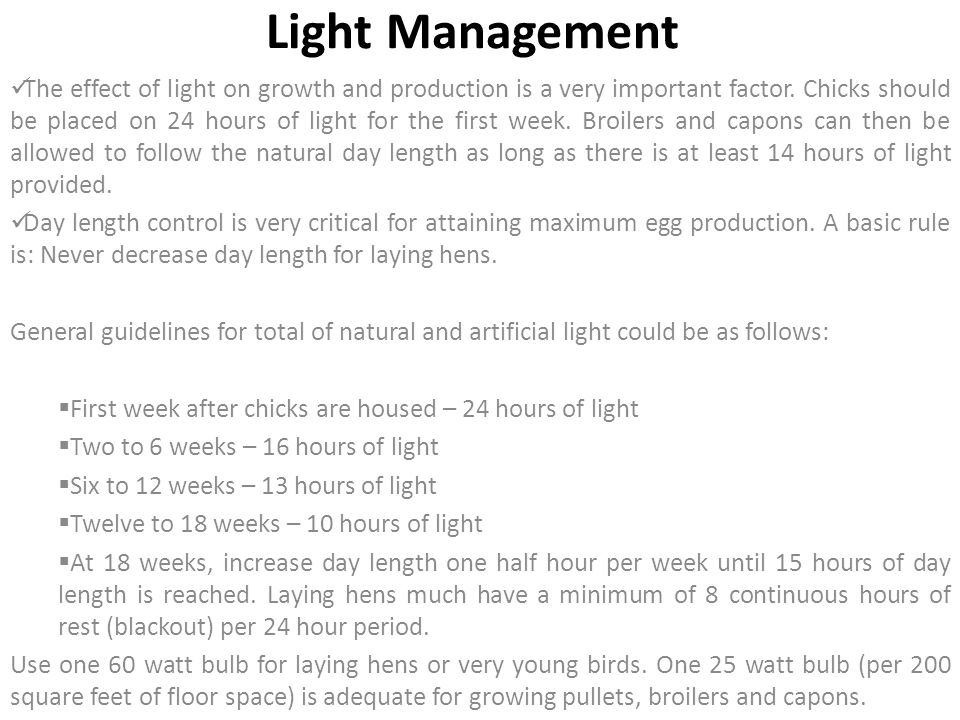 Light Management The effect of light on growth and production is a very important factor. Chicks should be placed on 24 hours of light for the first w