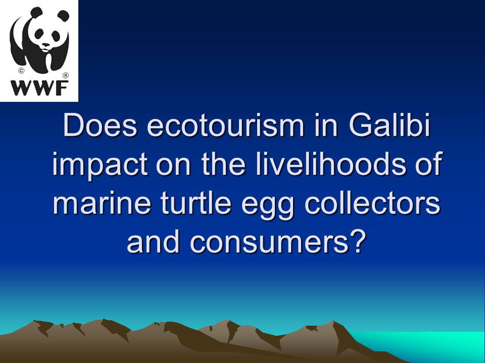 Does ecotourism in Galibi impact on the livelihoods of marine turtle egg collectors and consumers
