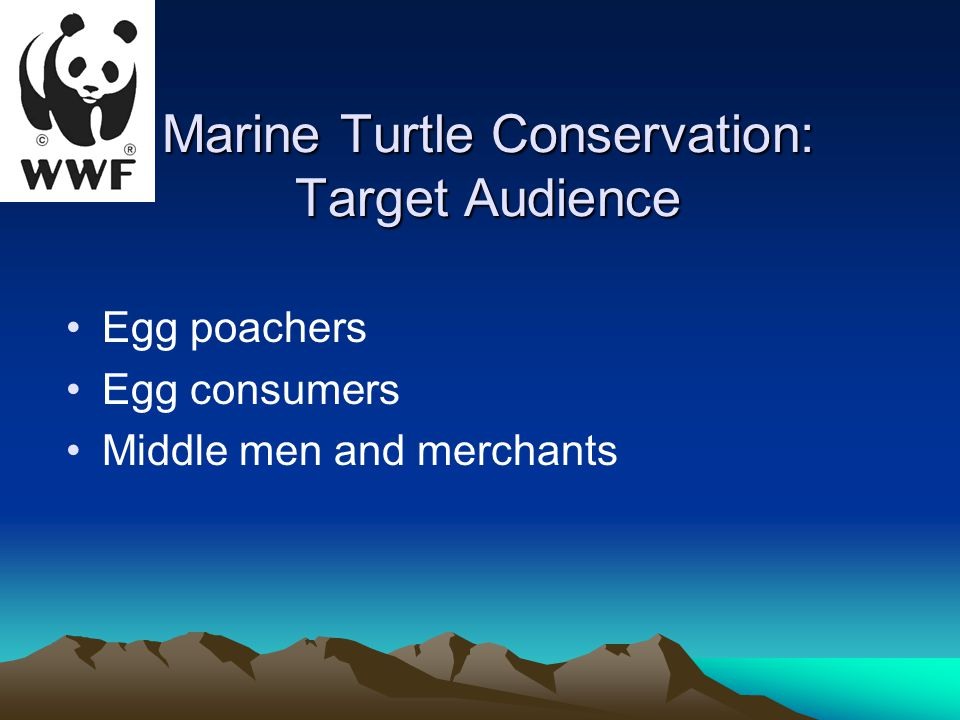 Marine Turtle Conservation: Target Audience Egg poachers Egg consumers Middle men and merchants