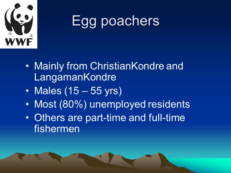 Egg poachers Mainly from ChristianKondre and LangamanKondre Males (15 – 55 yrs) Most (80%) unemployed residents Others are part-time and full-time fishermen