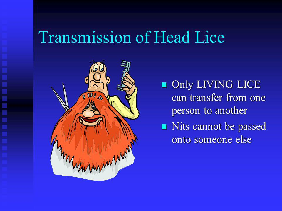 Diagnosis of Head Lice Nits are deposited on the hair shaft about 1mm from the scalp Eggs more than ½ of an inch away from the scalp are nearly always