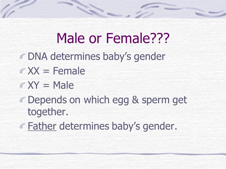Fraternal Twins 2 separate eggs get fertilized with 2 different sperm cells More than one egg got released during ovulation Siblings Can be sisters Brothers Brother and sister Tends to run in families