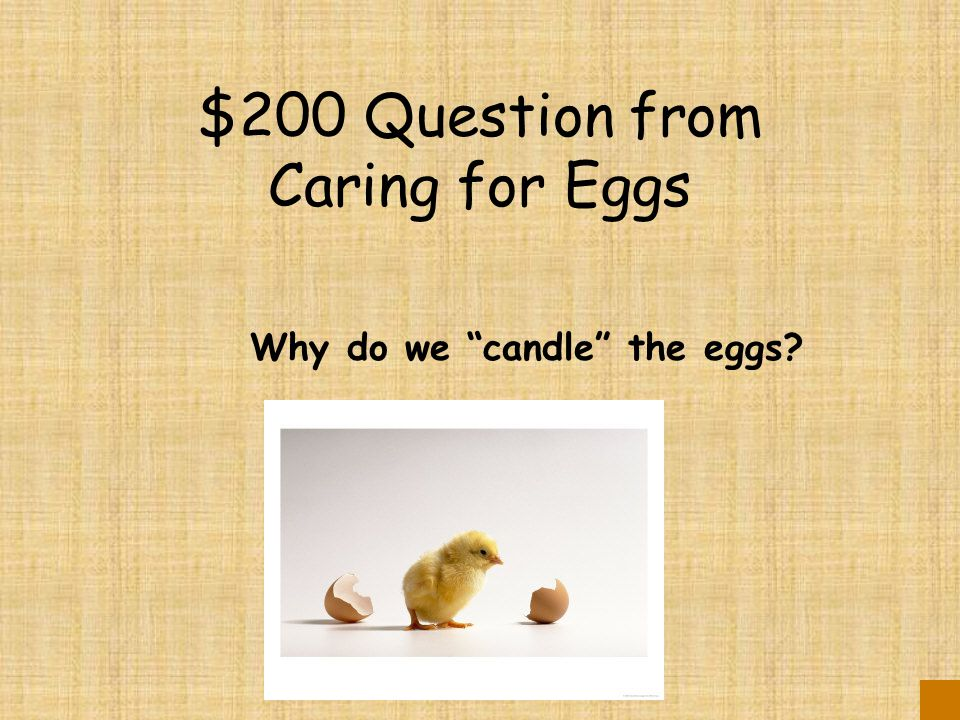 $100 Answer from Caring for Eggs This prevents the eggs from drying out