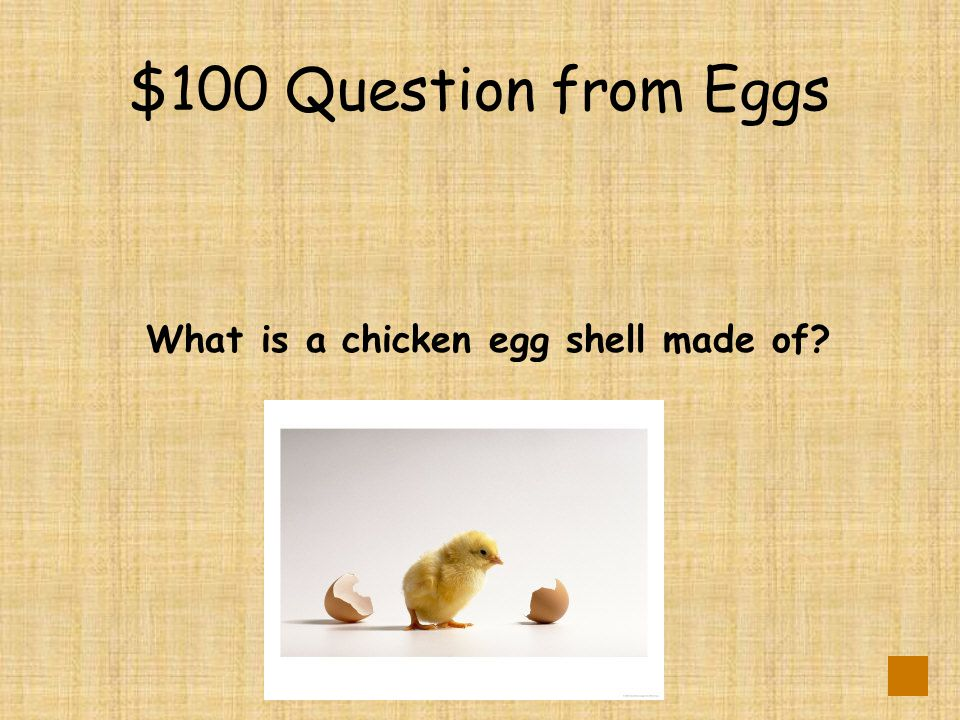 $100 Question from Caring for Eggs DOUBLE JEOPARDY Why do we put water in the incubator?