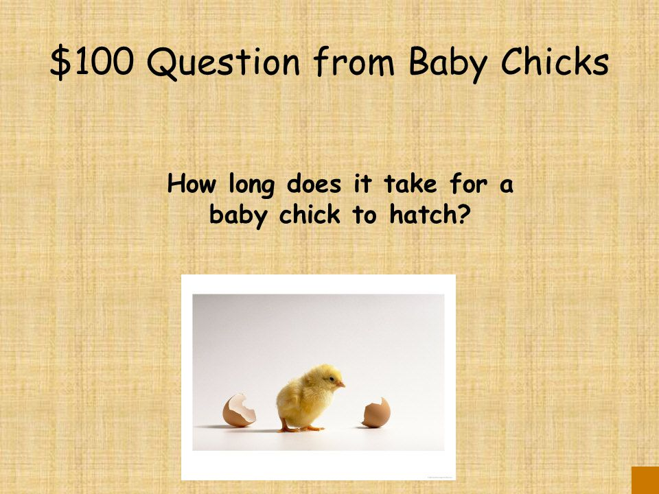 $500 Answer from Caring for Eggs To provide oxygen to the developing embryos