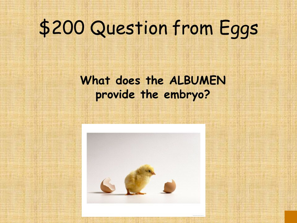 $200 Question from Eggs What does the ALBUMEN provide the embryo?