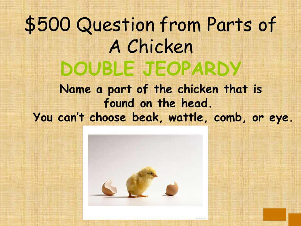 $400 Answer from Parts of A Chicken 2