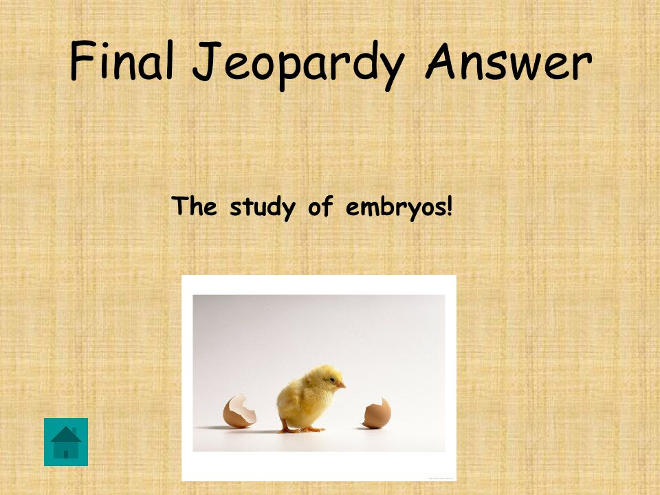 Final Jeopardy What is the definition of Embryology