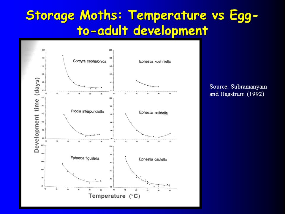 Storage Moths: Temperature vs Egg- to-adult development Source: Subramanyam and Hagstrum (1992)