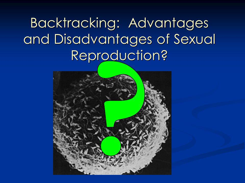 Backtracking: Advantages and Disadvantages of Sexual Reproduction?