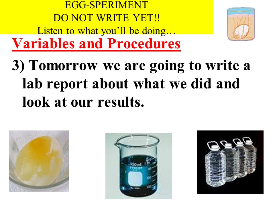 EGG-SPERIMENT Variables and Procedures 3) Tomorrow we are going to write a lab report about what we did and look at our results. EGG-SPERIMENT DO NOT