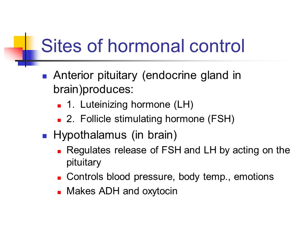 Sites of hormonal control Anterior pituitary (endocrine gland in brain)produces: 1. Luteinizing hormone (LH) 2. Follicle stimulating hormone (FSH) Hyp