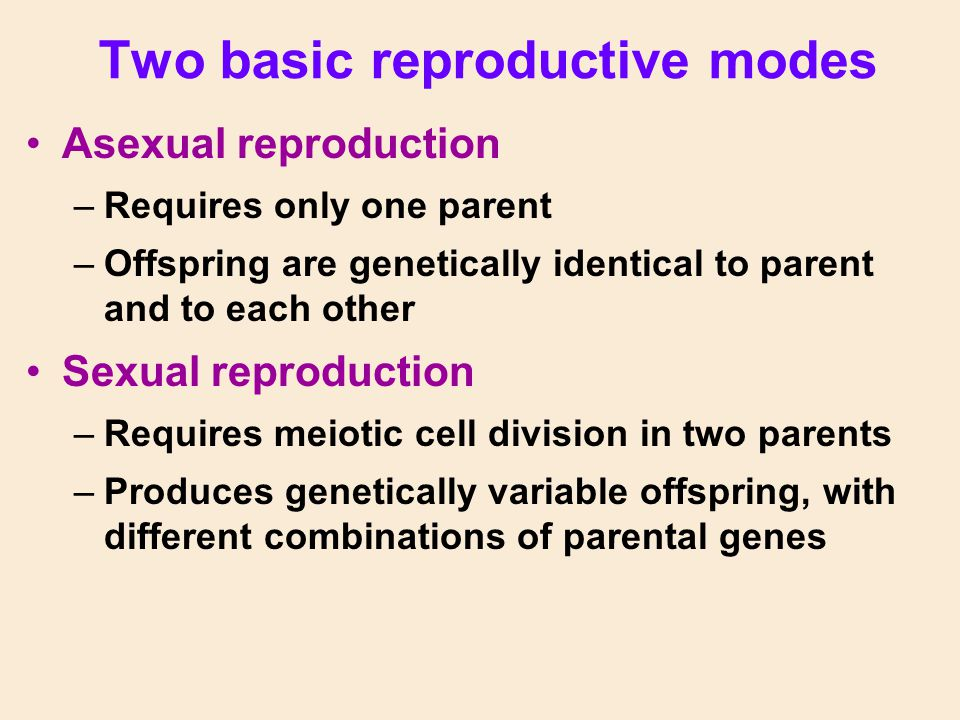 Two basic reproductive modes Asexual reproduction –Requires only one parent –Offspring are genetically identical to parent and to each other Sexual re