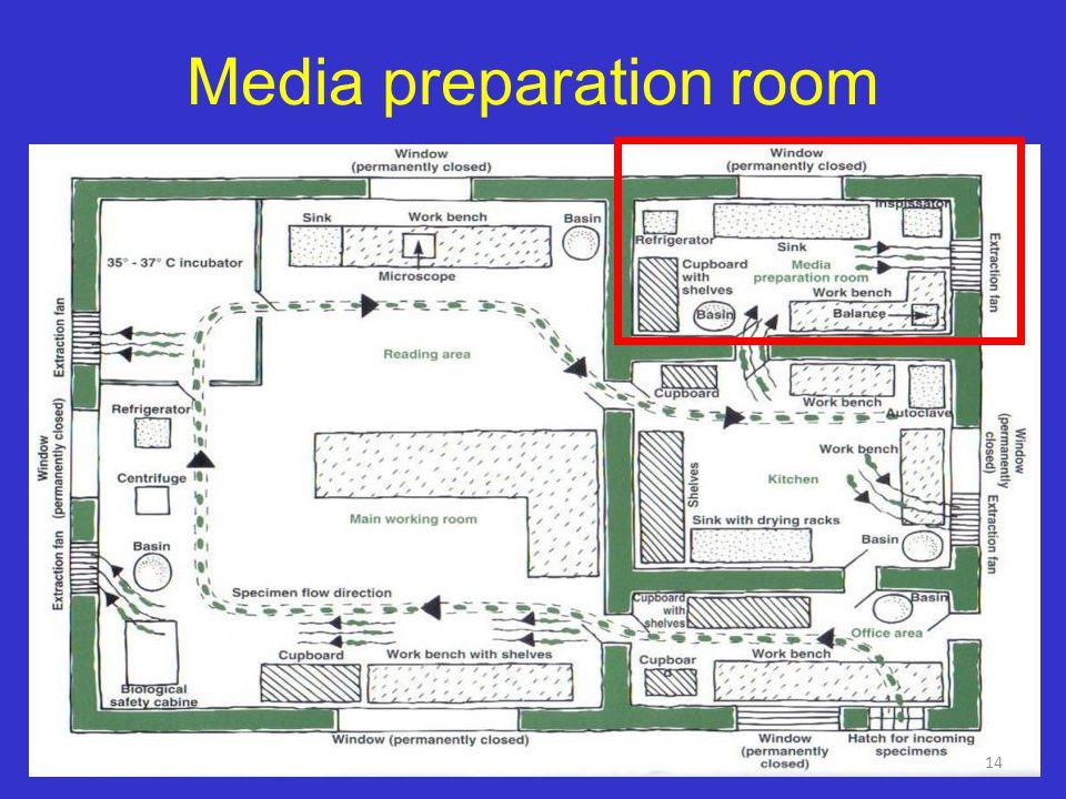 Plain egg-based media preparation 13